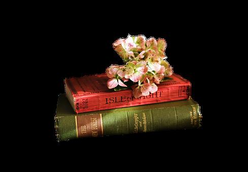 OBRÁZEK : knihy_1.png